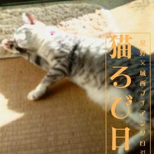 星野×城西プチアンソロジー 猫ろび日和