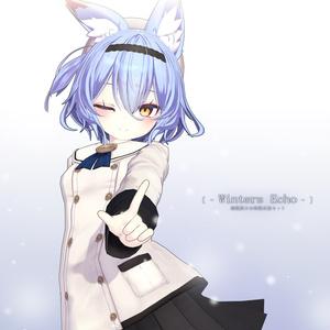 【オリジナル3Dコスチュームセット】幽狐族のお姉様 Winters Echo