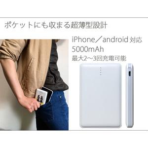 【モバイルバッテリー】/はなびら