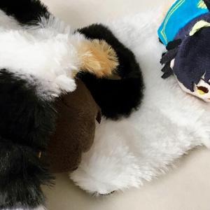 三毛猫ミニ毛布
