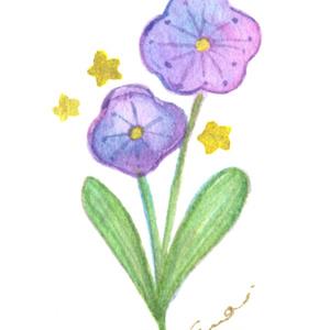 ミニ原画-宇宙の花-
