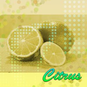 【オリジナル音源】Citrus【トランス】