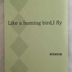Like a homing bird,I fly