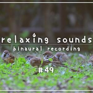 竹の耳かき & 春の環境音