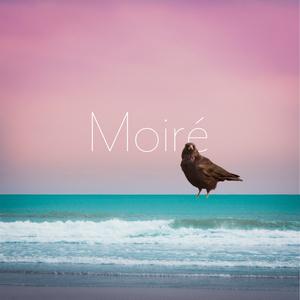 Moiré - John Gorilla