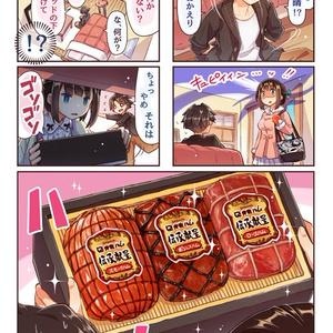 いっしょにゴハン食べたいッ・御歳暮どっさりハム編