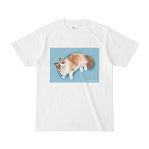 なめ子ちゃんTシャツ(スケッチ2)