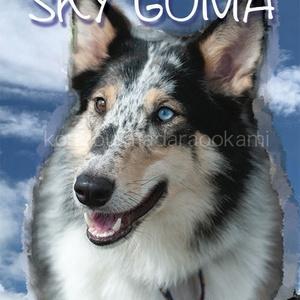 SKY GOMA
