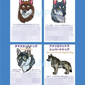 世界と日本の狼犬図鑑