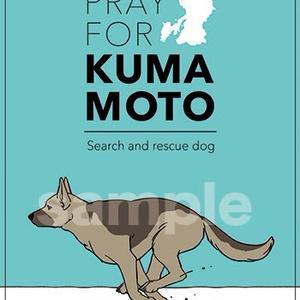 熊本震災動物支援同人誌「Animal connect(あにまるこねくと)」