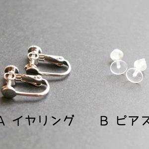 はんげつのほしつぶ イヤリング/ピアス