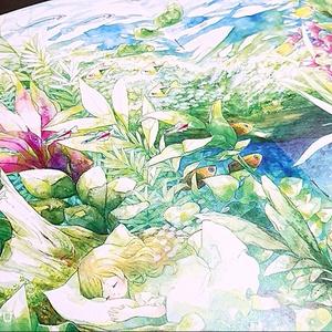 倉庫発送●Opal-イラスト本