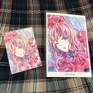 ポストカード『薔薇の妖精』