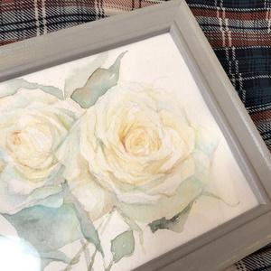 白薔薇の水彩原画
