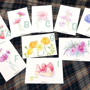 ポストカード各種【花・フルーツ】