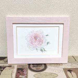 ピンクのバラの水彩原画