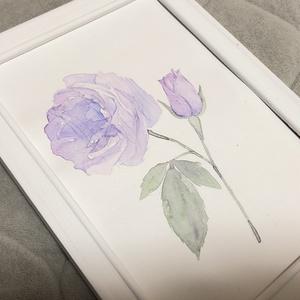 紫の薔薇の水彩原画