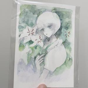 原画 / 純粋2