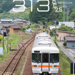 ◎ The 313 - DC2.5