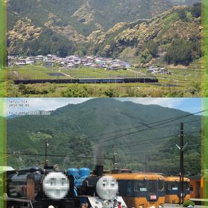 ◎ 静岡の鉄道 見る旅乗る旅