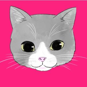 ハチワレの猫(高画質、有料販売のサンプル)