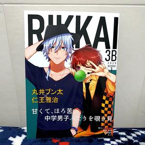 【合同イラスト本】RIKKAI 3B