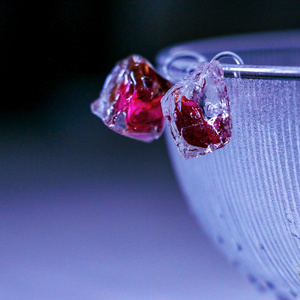 rose bad earring/pierce