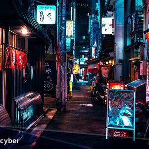 夜景のサイバーパンク加工プリセット PRO(Photoshop & Lightroom用)