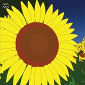 【完売】[DVD]『真夏のサンタクロース』 - 2nd Single Package