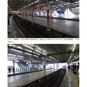 東急東横線渋谷駅 2013.3.5