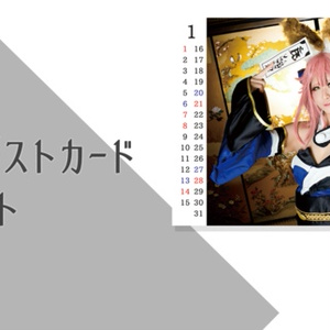 Fate写真アンソロジー servant tapestry