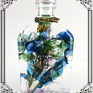 【FF14】植物標本・追憶の古代都市(ハーバリウム)