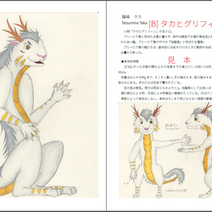 The Art of Taka and Griffin / タカとグリフィン設定資料集