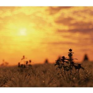 風景CGポストカード