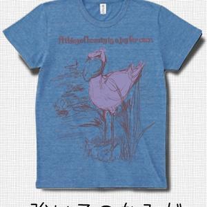 絵物語のあるTシャツセット -ハシビロコウ-強い子のなみだ