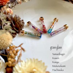 grass glass Autumn