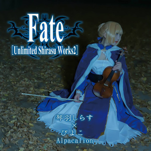 C95新譜「Fate」シリーズアレンジアルバム2