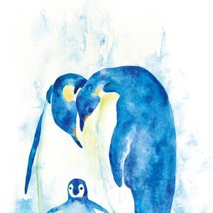 ポストカード 皇帝ペンギン