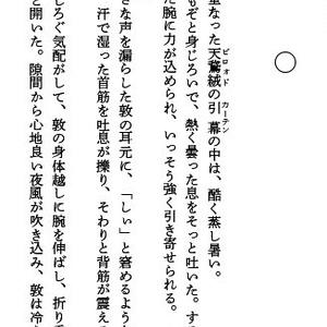 偽装潜入捜査 浮気騒動篇(DL版)