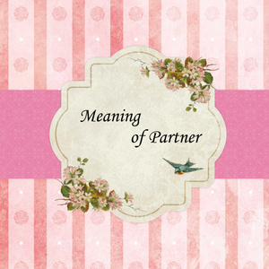 Meaning of Partner