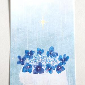 Postcard (a01)