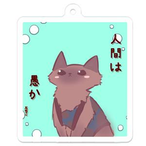 【猫】ぷちこ のキーホルダー【人間は愚か】
