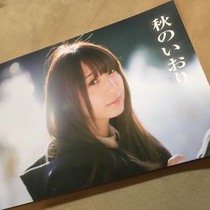 【C93】秋の伊織 写真集