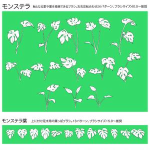 観葉植物ブラシセット
