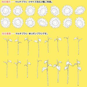 切り花ブーケセット【ひまわり】