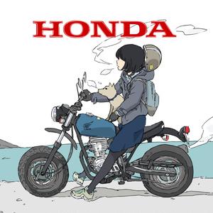 HONDA ape ステッカー