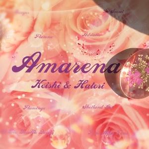 羽鳥あや旧譜AcousticCD【Amarena】(アマレーナ)