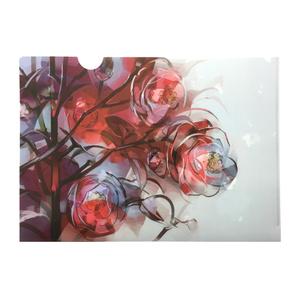 Camellia / CLEAR FILE