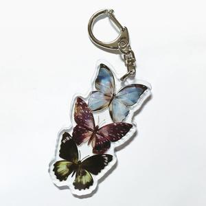 3 Butterflies / ACRYLIC KEY RING