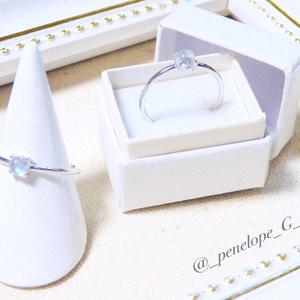 Gift-マーリン-